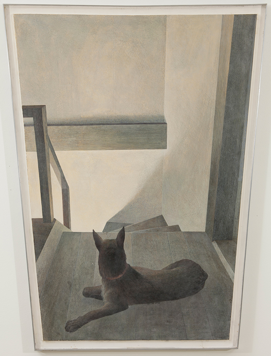 A dog lays on the landing of a darkened staircase. The dog faces away from the viewer. Its head is raised and it is looking down the stairs. A bright light shines up the stairs from below, casting the dog and landing in shadow.