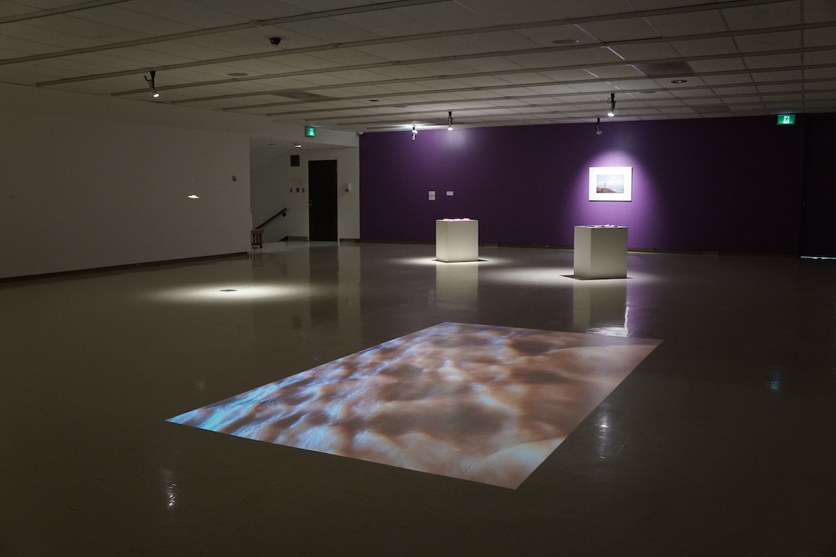 A video of muddy, wavy water is projected onto the floor in a darkened gallery. In the background two plinths and a photograph are illuminated by spotlights.