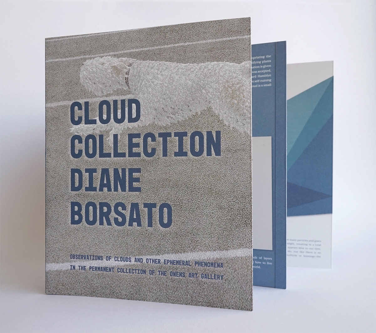"""The cover of a Cloud Collection with """"CLOUD COLLECTION DIANE BORSATO"""" in large uppercase blue type."""